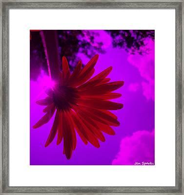 Fairy Tale Framed Print by Jen Sparks