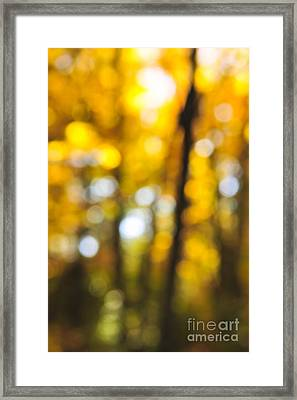 Fall Abstract Framed Print by Elena Elisseeva