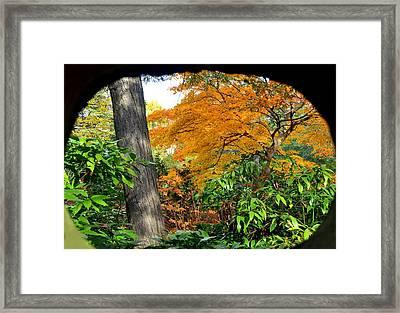 Fall Arriving Framed Print by Vassilis Borovas