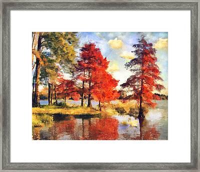 Fall At Swan Lake Framed Print by Jai Johnson