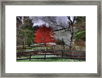 Fall Begins Framed Print by Todd Hostetter