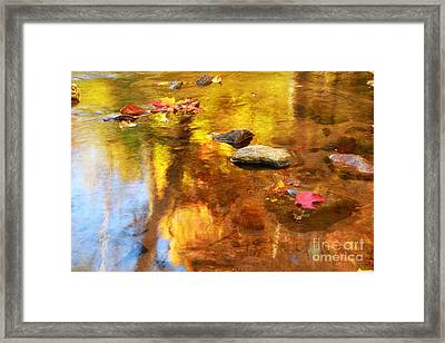 Fall Color In Stream Framed Print by Charline Xia