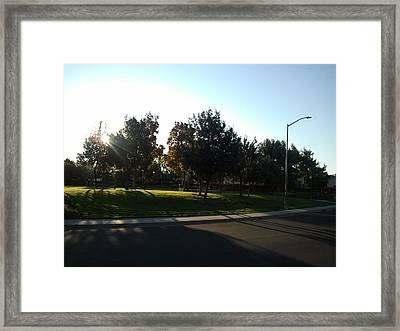 Fall Colors 6 -- Sunrise Framed Print by Remegio Onia