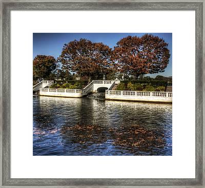 Fall Falling Framed Print by Vicki Jauron