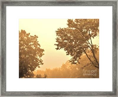 Fall Foggy Morning Framed Print by Marsha Heiken