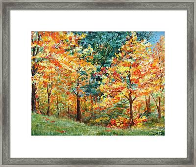 Fall Foliage Framed Print by AnnaJo Vahle