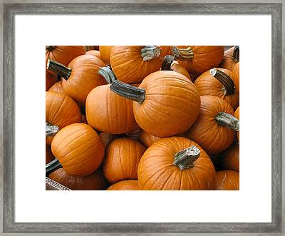 Fall Harvest Time Framed Print by Shawn Hughes