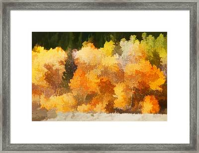 Fall In The Sierra IIi Framed Print by Carol Leigh