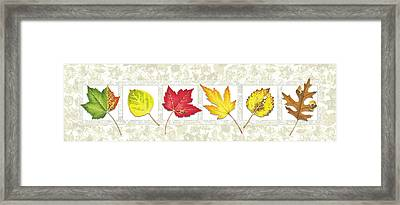 Fall Leaf Panel Framed Print by JQ Licensing