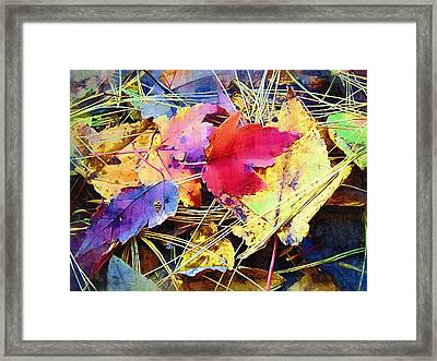 Fall Leaves 2 Framed Print by Susan Lee Giles