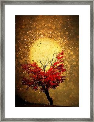 Fall Light Framed Print by Emily Stauring