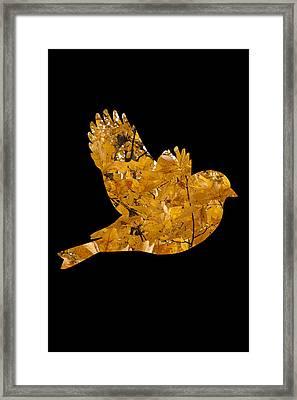 Fall Peace Framed Print by Julian Bralley