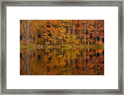 Fall Reflection Framed Print by Karol Livote
