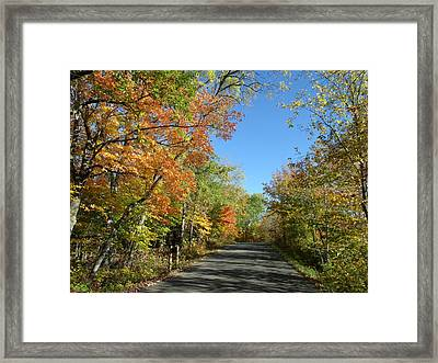 Fall Road In Blue Framed Print by Brian  Maloney