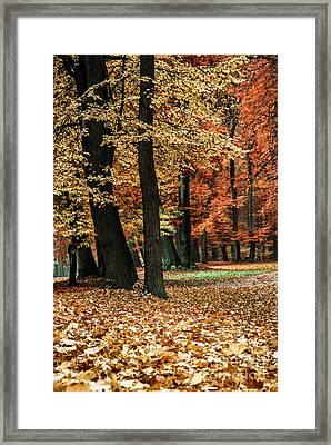 Fall Scenery Framed Print by Hannes Cmarits