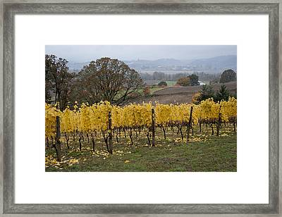 Fall Scenic Framed Print by Jean Noren