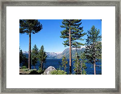 Fallen Leaf Lake Area With Pine Trees In Foreground, Lake Tahoe, California, Usa Framed Print by Ellen Skye
