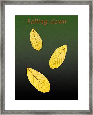 Falling Down Framed Print by Ari Salmela