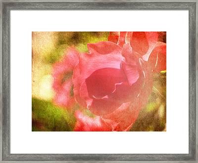 Falling In Love Framed Print by Amy Tyler