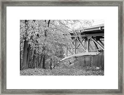 Falling Under The Bridge Framed Print by Trish Hale