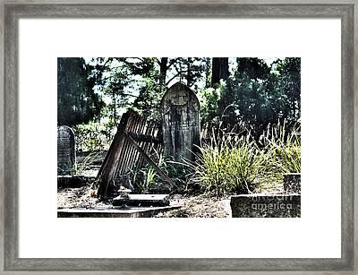 Family Ties Framed Print by Joanne Kocwin