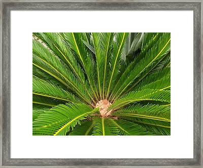 Fancy Framed Print by Rani De Leeuw