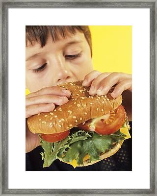 Fast Food Framed Print by Ian Boddy