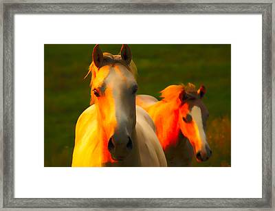 Father And Son Framed Print by Randall Branham