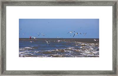 Feed Us - Ferry To Galveston Tx Framed Print by Susanne Van Hulst
