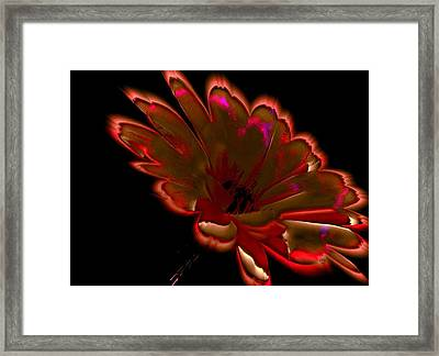 Femininity In Profile Framed Print by Rose Szautner