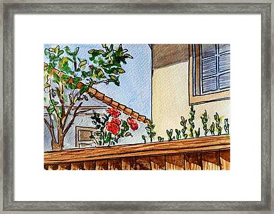 Fence And Roses Sketchbook Project Down My Street Framed Print by Irina Sztukowski
