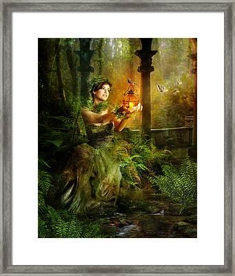Fern Framed Print by Mary Hood