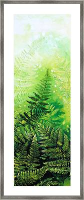 Ferns 4 Framed Print by Hanne Lore Koehler