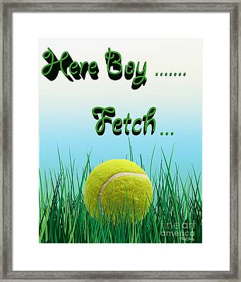 Fetch Framed Print by Cheryl Young