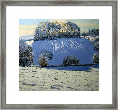 Field Of Shadows Framed Print by Andrew Macara