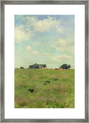 Field With Trees And Sky Framed Print by Walter Frederick Osborne