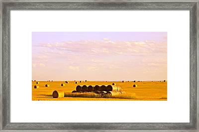 Fields Of Plenty Framed Print by Kate Purdy