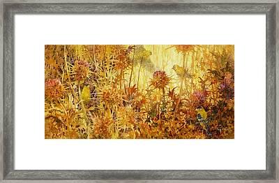 Finch Feast Framed Print by Floy Zittin