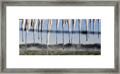 Fingers Of Winter Framed Print by David Lee Thompson