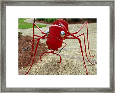 Fire Ant Art Framed Print by Danny Jones