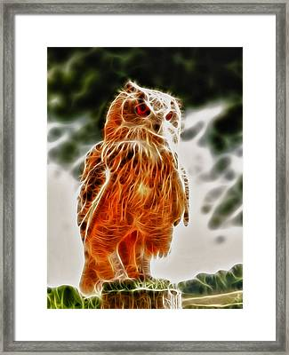 Fire Owl V1 Framed Print by Tilly Williams