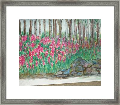 Fireweed By Stonewall Framed Print by Debbie Wassmann
