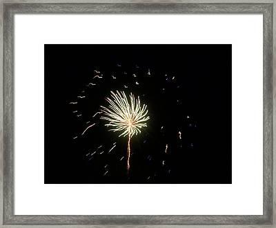Fireworks 1 Framed Print by Tanya Moody