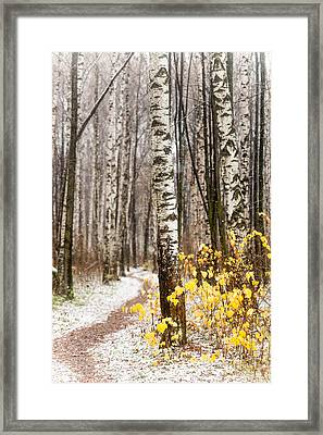 First Snow. Hidden Path Framed Print by Jenny Rainbow