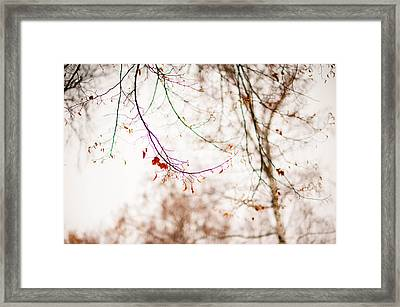 First Snow. Touch Of Gold Framed Print by Jenny Rainbow