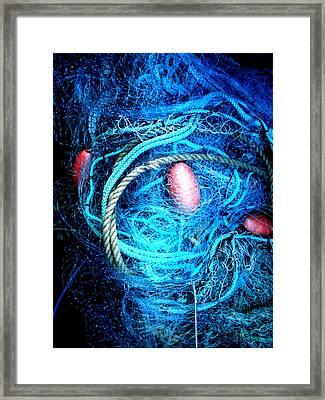 Fish Robe Net   Framed Print by Colette V Hera  Guggenheim