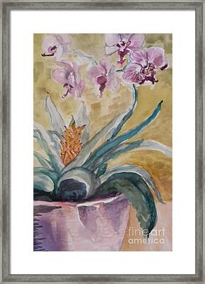 Five Purple Orchids  Framed Print by Emily Michaud
