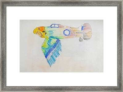 Flight Framed Print by Virginia Stuart