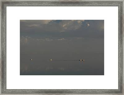 Floating Along Framed Print by Laurie Search