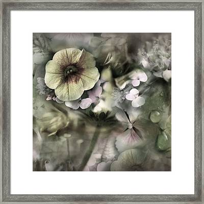 Floral Montage Framed Print by Bonnie Bruno